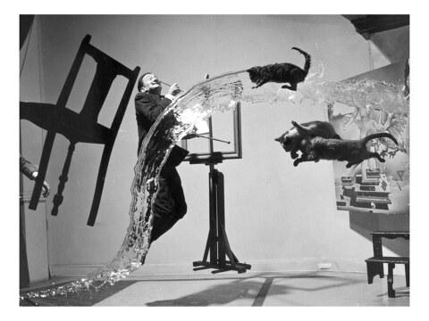 Salvador Dali mit fliegenden Katzen