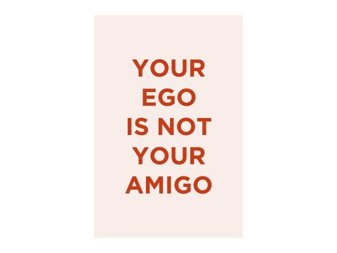 Your Ego Is Not Your Amigo rose