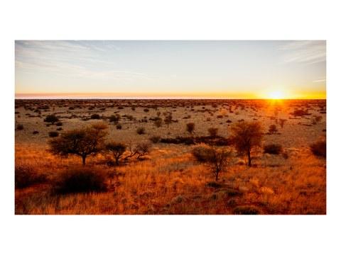 Kalahari Sonnenaufgang