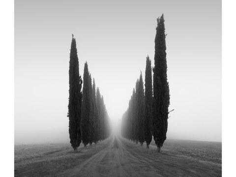 Poggio Covili Toskana