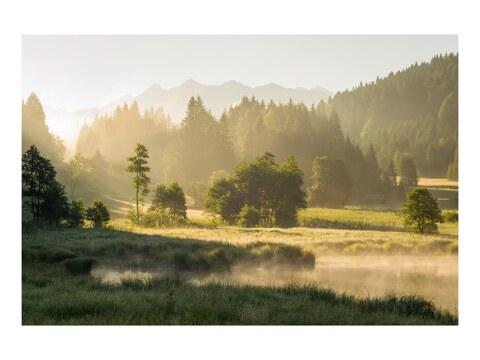 Sommermorgen im Karwendel