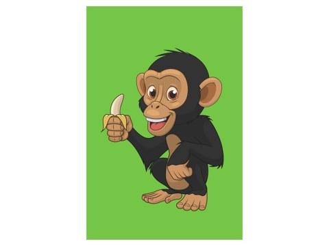 Affe Kinderbild