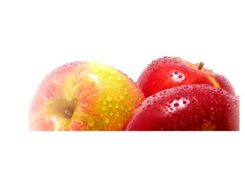 Apfel Bild