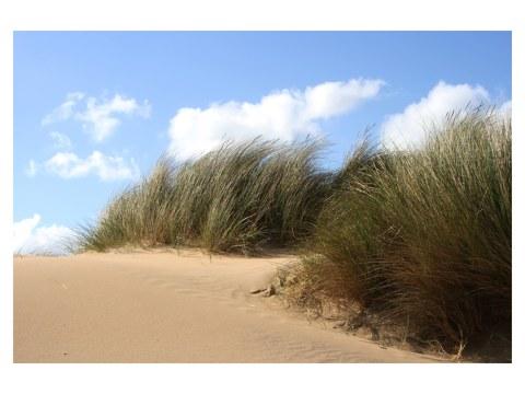 Englischer Strand