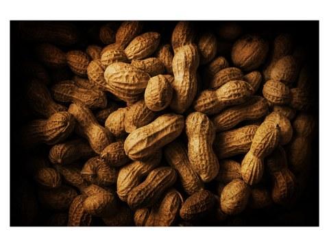 Erdnüsse Bild
