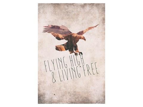 Flying high living free
