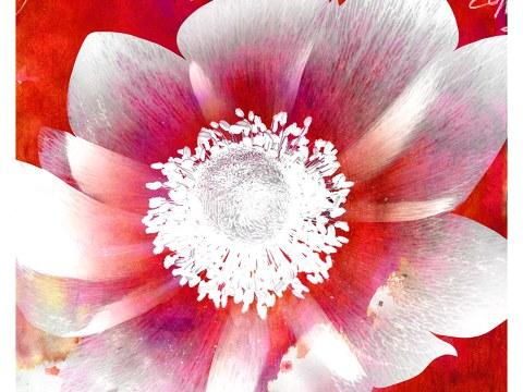 Gemälde Blume