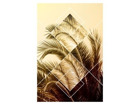 Geometric Palm Leaves