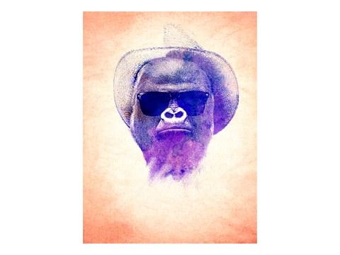 Gorilla Streetart