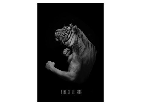 Tiger Design Bild