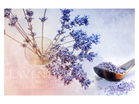 Lavendel Motiv