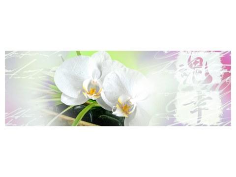 Orchidee Motiv