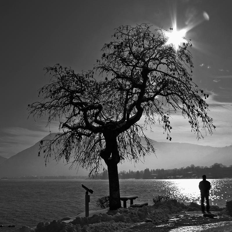 Kontrastreiche Schwarzweiß Bilder durch Sonne