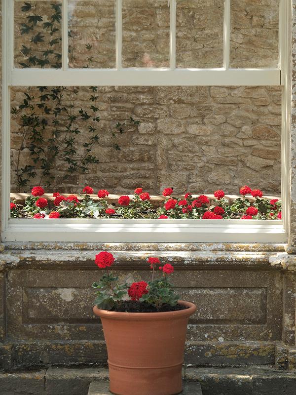 Urlaubsfoto Detail Fensterbrett