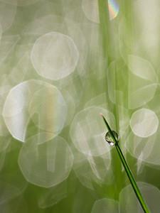 Lichtkreise Fotografie
