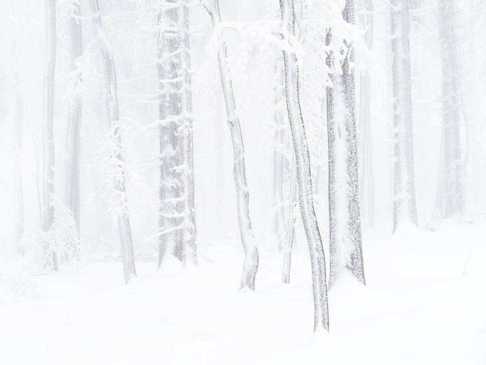 28 - Schneebilder kostenlos ...