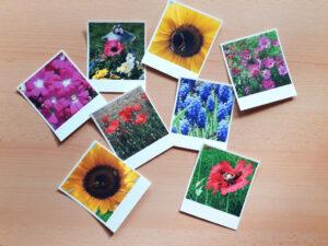 DIY-Geschenkanhänger aus Fotos im Polaroid-Stil Foto: B. Bienhaus
