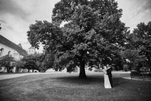Hochzeitsfoto Ideen: Brautleuteshooting vor einem großen Baum