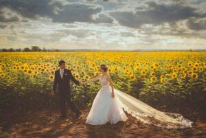 Brautleute vor einem Sonnenblumenfeld